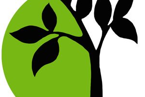 The Dubuque Franciscans' Statement On Racial Injustice